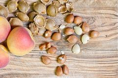 杏子和坑 免版税库存图片