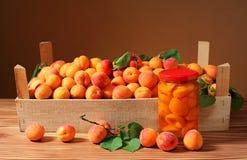 杏子和蜜饯在一个瓶子玻璃 免版税库存照片