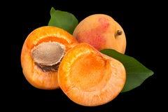 杏子在balck的果子特写镜头 库存照片