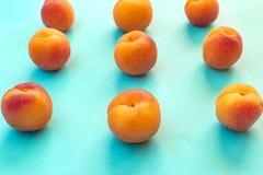 杏子对称有蓝色背景 库存图片