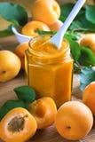 杏子新鲜水果阻塞瓶子 免版税图库摄影