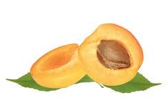 杏子新鲜的绿色水多的叶子 库存图片