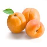 杏子果子查出的叶子白色 库存图片