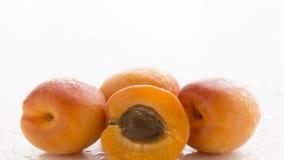 杏子果子 免版税图库摄影