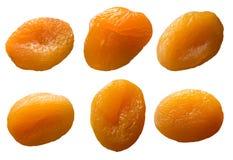 杏子烘干了白色 免版税库存图片