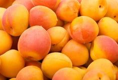 杏子背景新鲜自然 免版税库存照片