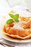 杏子蛋糕 库存图片