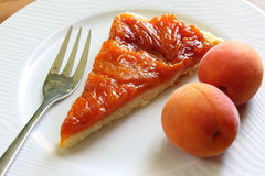 杏子馅饼 免版税库存图片