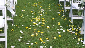 杏仁庆祝红色某个婚礼 黄色&白色玫瑰花瓣击倒走道 免版税图库摄影
