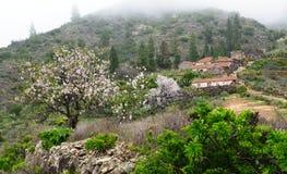 杏仁开花在一个被放弃的小村庄在西班牙 库存照片