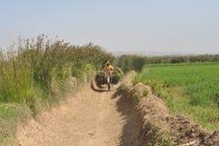 村庄人在摩洛哥 库存图片