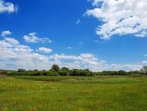 村庄全景春天-宽敞绿色草甸,与c的蓝天 免版税库存照片