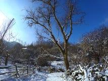 村庄冬天多雪的早晨 库存照片