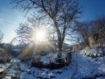 村庄冬天多雪的早晨 图库摄影