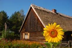 村庄前房子老时髦的向日葵 免版税库存图片