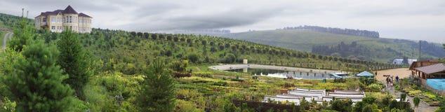 村庄和春天湖 狗窝树木园开花的谷 库存照片