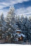 村庄在一个多雪的森林里 免版税图库摄影