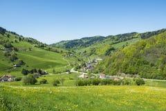 村庄在有开花的草甸的黑森林里 库存照片