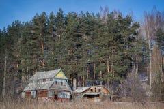 村庄在森林 免版税库存照片