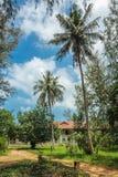 村庄在热带庭院里 免版税库存照片