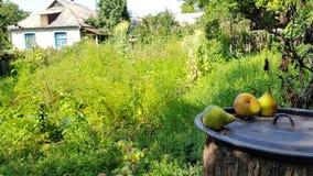 村庄场面在乌克兰 免版税图库摄影