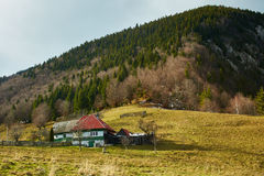 村庄房子 库存照片