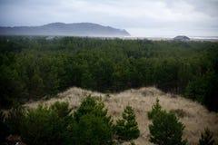 村庄有雾的海边 图库摄影