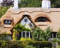 村庄玫瑰盖了村庄 免版税库存图片