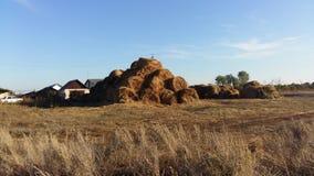 村庄生活,做在冬天的干草 免版税库存图片