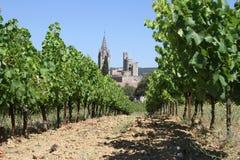 村庄的Aiguèze葡萄园在普罗旺斯,法国 库存照片