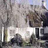 村庄盖了冬天 免版税库存图片