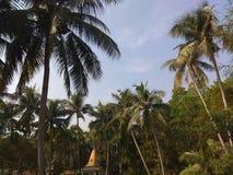 村庄自然 免版税库存图片