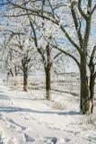 村庄街道在一个冬日 图库摄影