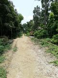 村庄街道在孟加拉国 库存照片