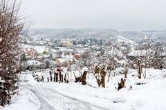 村庄路在冬天 免版税库存图片