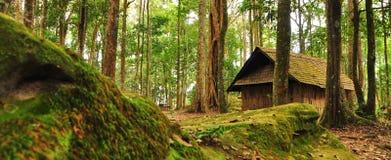 村庄雪结构树冬天木头 库存图片