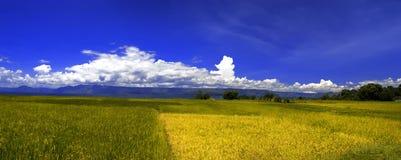 村庄风景全景, Samosir海岛。 库存照片