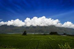 村庄风景, Samosir海岛。 库存照片