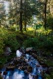 村庄,瀑布在美丽的森林里 库存照片