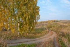 村庄,西伯利亚 免版税库存照片