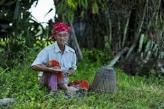 村庄environtment的马来西亚人当地人民 免版税库存图片