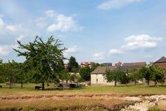 村庄Wijlre在荷兰语Limburg 免版税图库摄影