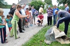 村民捉住了Shmankivchyky Chupacabra_5 免版税图库摄影