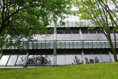 杜伦大学,英国 免版税库存照片