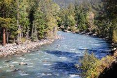 从杜兰戈的窄片铁路通过落矶山由河生命负责在科罗拉多美国的Silverton的 免版税图库摄影