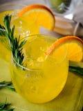 杜松子酒和桔子 免版税库存照片