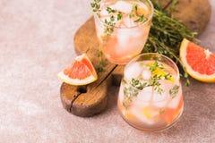 杜松子酒带苦味柠檬用麝香草和葡萄柚 果子柠檬水 库存图片