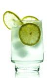 杜松子酒玻璃冰石灰片式补剂 库存图片