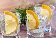 杜松子酒用柠檬和冰 库存照片