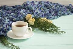 杜松茶与干玫瑰的和分支  库存图片
